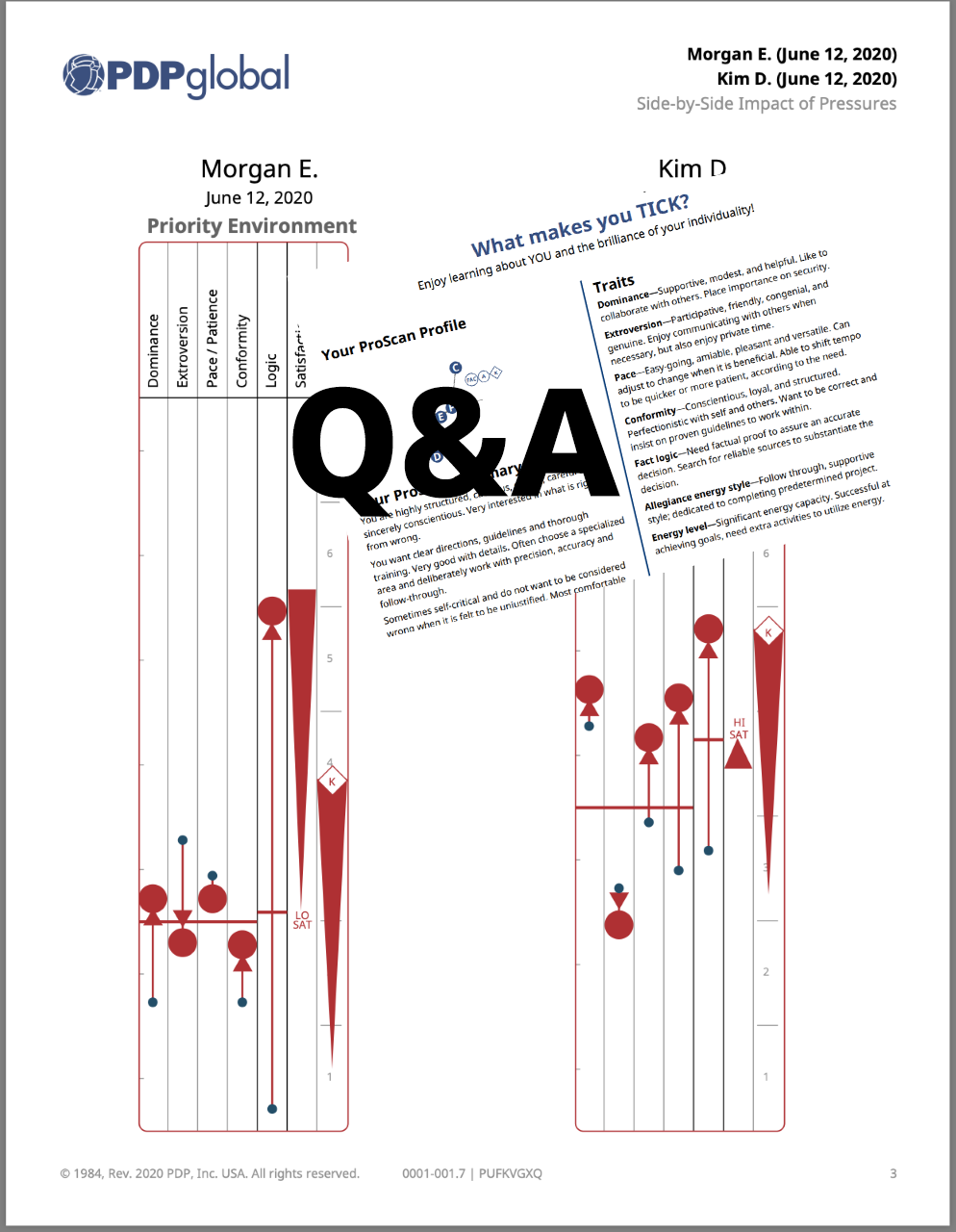 Personal Performance Actions Report plus Q&A Personal QuickView & Side-by-Side Priority Reports